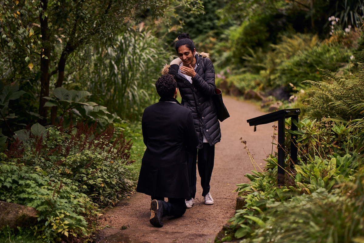 couple walking through the woods in the rain
